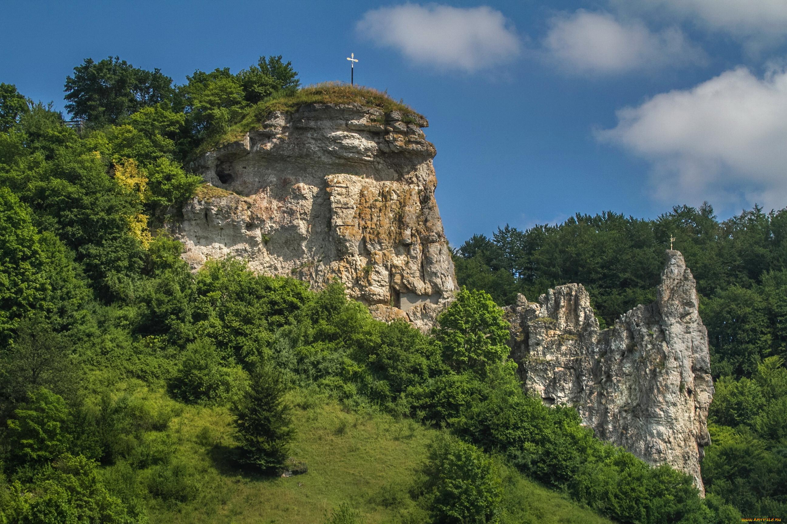 Бавария природа горы скала деревья